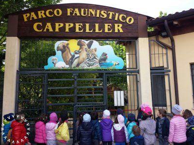 parco-faunistico-cappeller-cartigliano-vicenza-01_grid.jpg