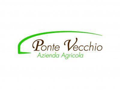 Logo_PonteVecchio_grid.jpg